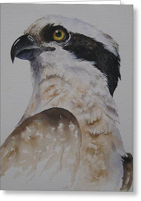 Greeting Card featuring the painting Proud Osprey by Mary McCullah