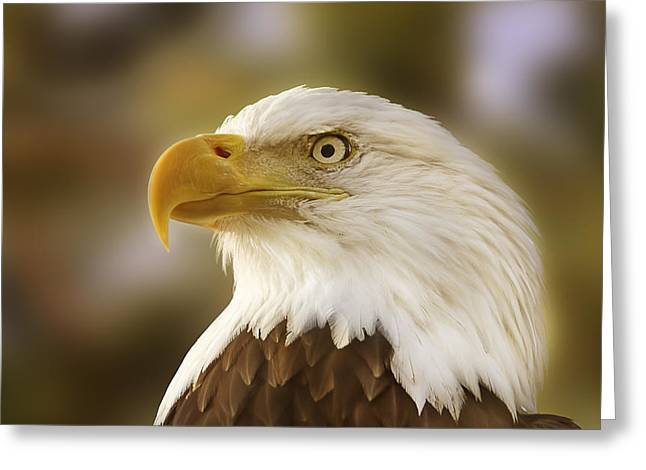 Proud Symbol Of A Nation  Greeting Card