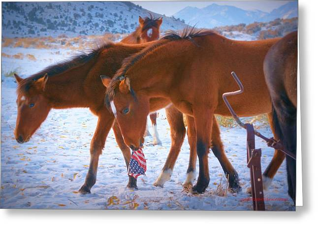 Proud To Be An American Icon Of The West Greeting Card by Jeanne  Bencich-Nations