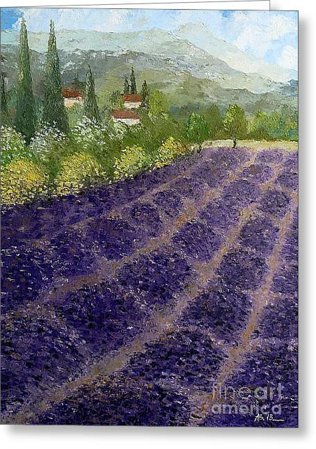 Provence Lavender Fields  Greeting Card