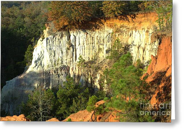 Providence Canyon State Park Greeting Card by Donna Brown