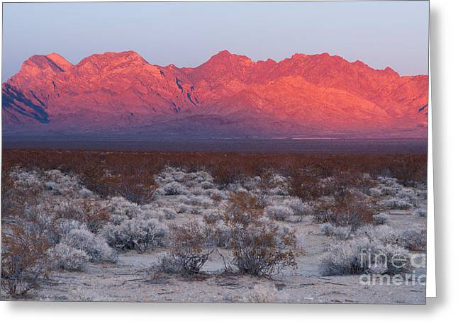 Providence Mountains Edgar And Fountain Peaks Mojave Desert Greeting Card by Christopher Boswell