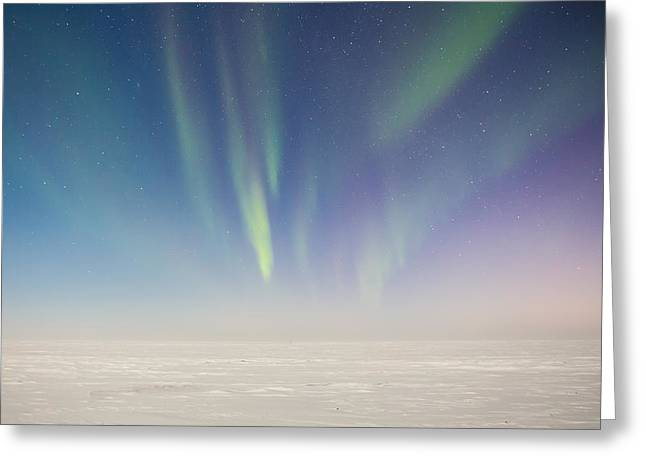Prudhoe Bay Aurora Borealis Greeting Card by Sam Amato