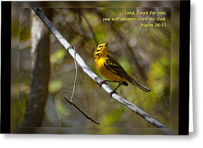 Psalms 38 15 Greeting Card by Dawn Currie