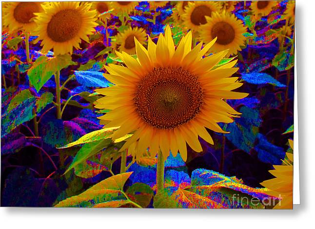 Psychedelic Sunflowers Greeting Card