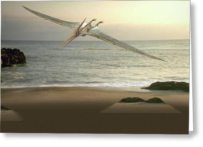 Pteranodon Pterosaur Greeting Card