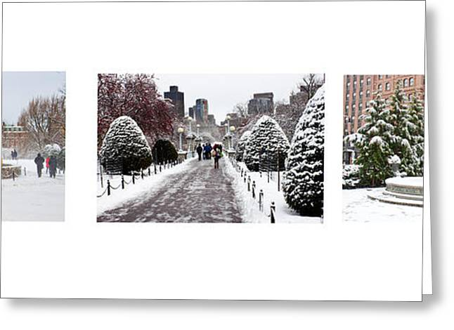 Public Garden Triptych Greeting Card by Thomas Marchessault