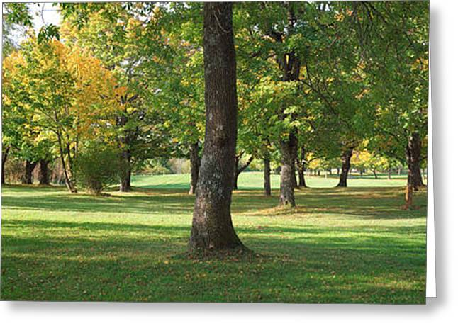 Public Park In Autumn Colors, Gresham Greeting Card by Panoramic Images
