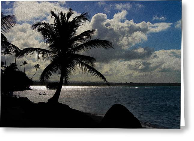 Puerto Rico Palm Tree Silhouette  Greeting Card