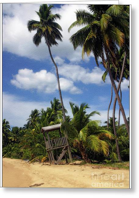 Puerto Rico Palms II Greeting Card by Madeline Ellis