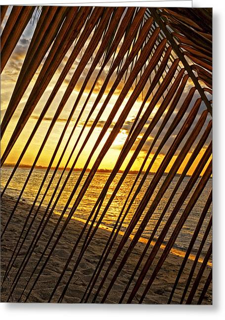 Puerto Rico Sunset 2 Greeting Card by Stephen Anderson