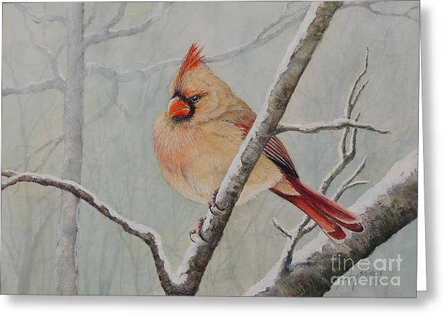 Puffed Up For Winters Wind Greeting Card