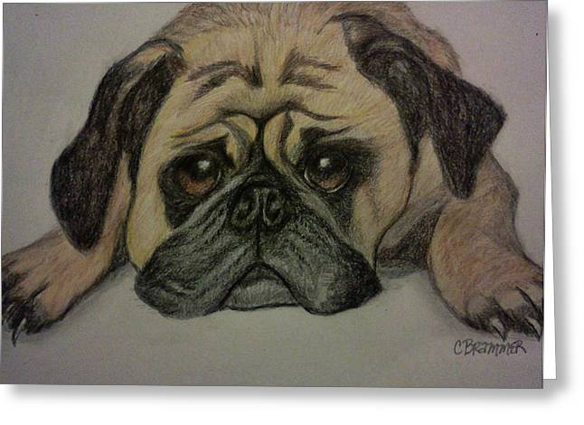Pug Greeting Card by Christy Saunders Church