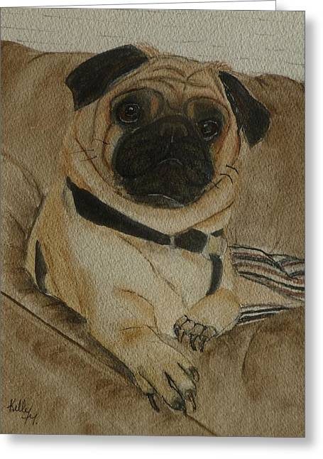 Pug Dog All Ready To Cuddle Greeting Card by Kelly Mills