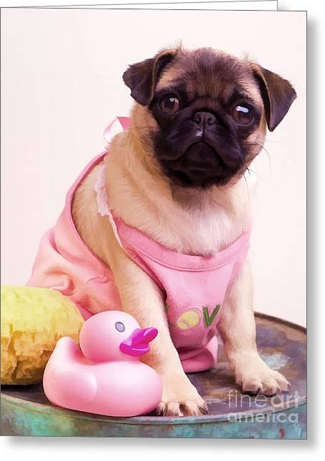 Pug Puppy Bath Time Greeting Card by Edward Fielding