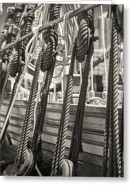 Pulley And Stay Black And White Sepia Greeting Card by Scott Campbell