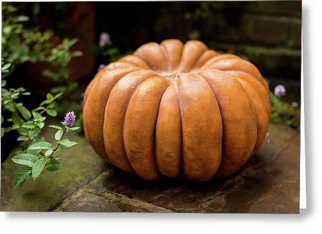 Pumpkin Greeting Card