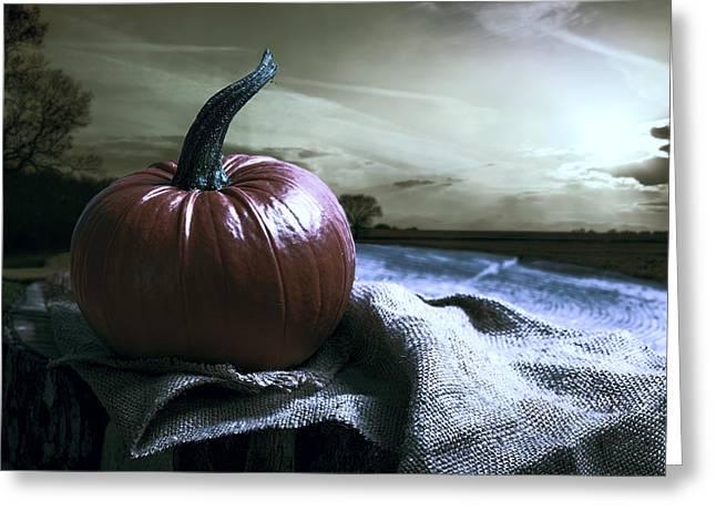 Pumpkin At Sunset Greeting Card by Amanda Elwell