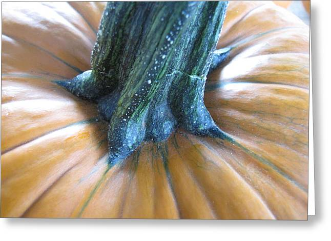Greeting Card featuring the photograph Pumpkin by Beth Vincent