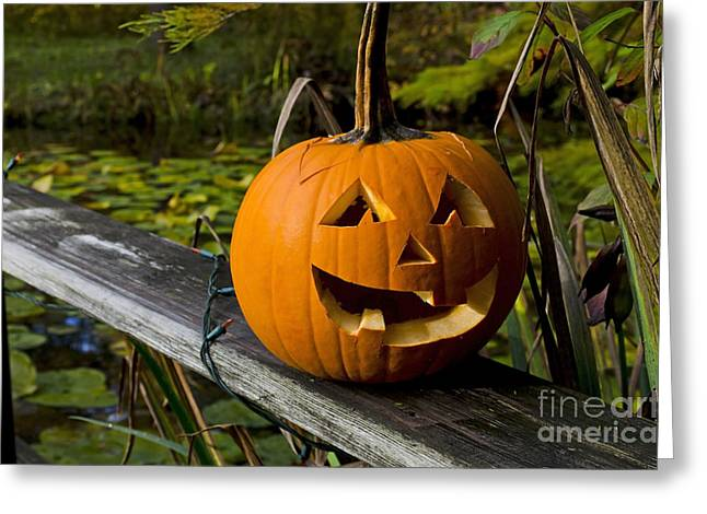 Pumpkin By The Pond Greeting Card