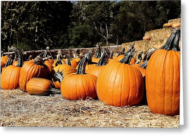 Pumpkin Goofing Off Greeting Card