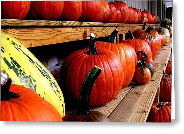 Pumpkin Lineup Greeting Card by Julie Grandfield