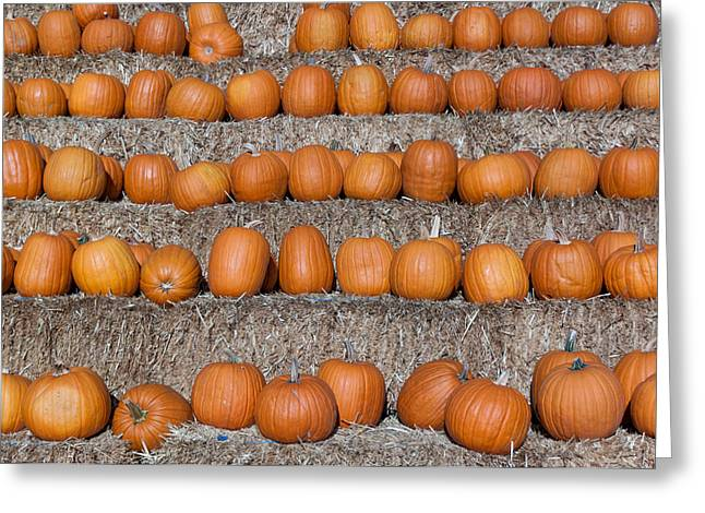 Greeting Card featuring the photograph Pumpkin by Lora Lee Chapman