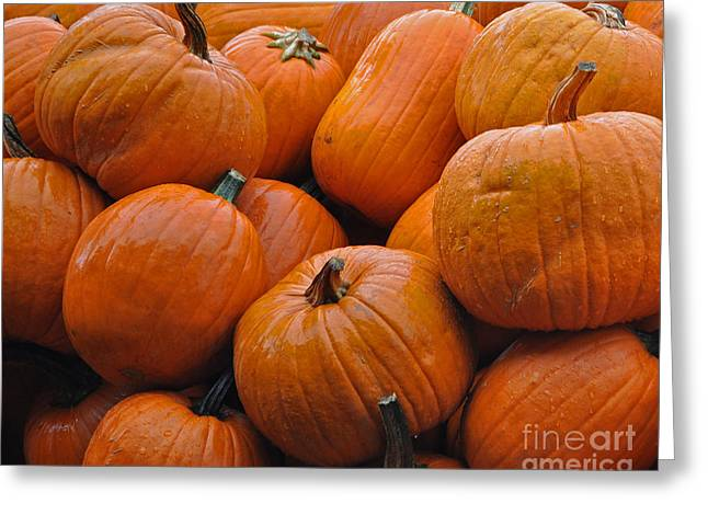 Greeting Card featuring the photograph Pumpkin Pile by Tikvah's Hope