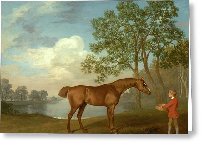 Pumpkin With A Stable-lad Signed And Dated Greeting Card by Litz Collection