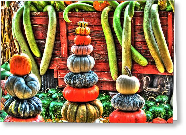 Pumpkins And Gourds Greeting Card by Linda Segerson