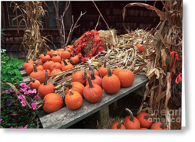 Pumpkins In The Wagon Greeting Card by John Rizzuto