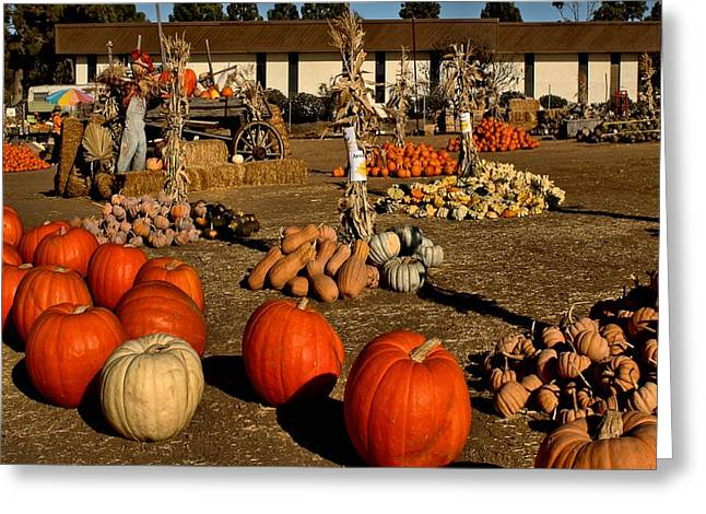 Greeting Card featuring the photograph Pumpkins by Michael Gordon
