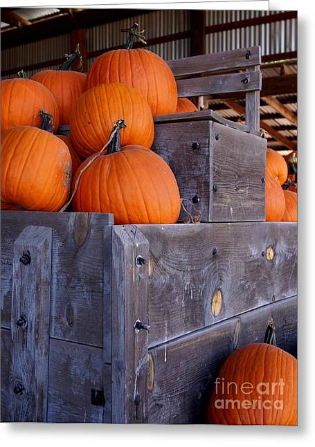 Pumpkins On The Wagon Greeting Card by Kerri Mortenson