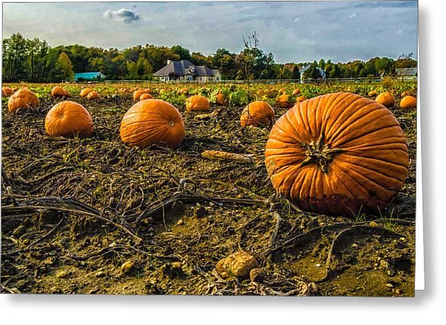 Pumpkins Picking Greeting Card by Louis Dallara