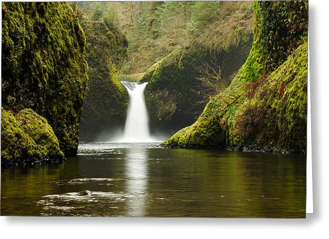 Punch Bowl Falls Greeting Card by Jesse Wright