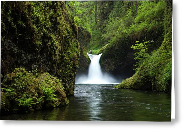 Punch Bowl Waterfall, Eagle Creek Greeting Card by Art Wolfe