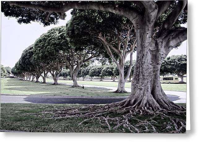 Punchbowl Cemetery - Hawaii Greeting Card by Daniel Hagerman