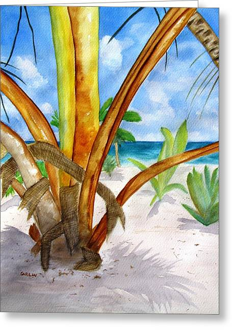 Punta Cana Beach Palm Greeting Card