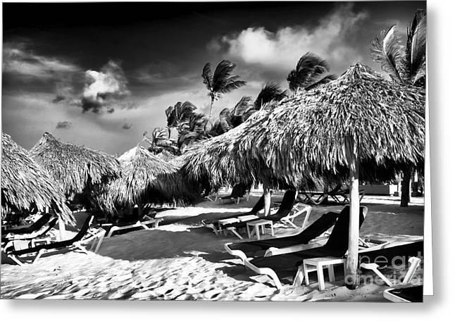 Punta Cana Choices Greeting Card by John Rizzuto