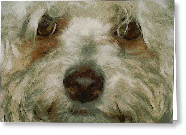 Puppy Eyes Greeting Card by Ernie Echols