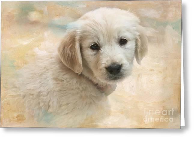 Puppy Eyes Greeting Card by Jayne Carney