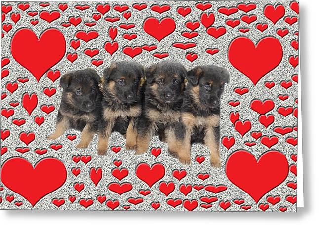 Puppy Love Greeting Card by Aimee L Maher Photography and Art Visit ALMGallerydotcom