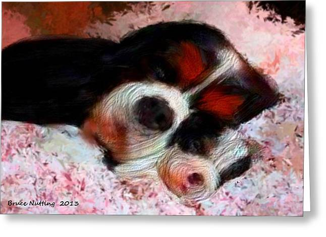 Puppy Love Greeting Card by Bruce Nutting