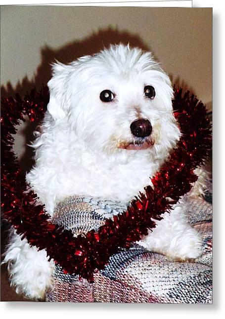 Puppy Love Valentine Greeting Card by Eddie Eastwood