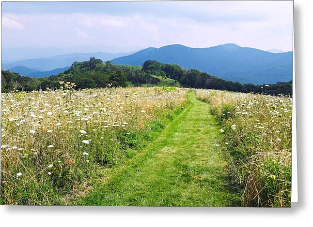 Purchase Knob Greeting Card by Melinda Fawver
