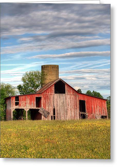 Pure Country II Greeting Card by JC Findley