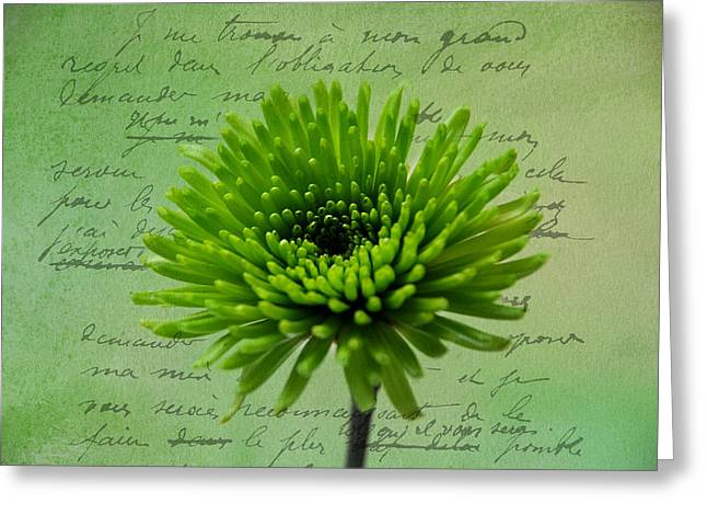 Pure Green 2 Greeting Card by Linda Segerson