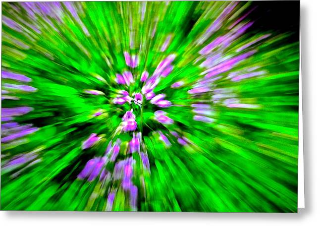 Purple Burst Greeting Card