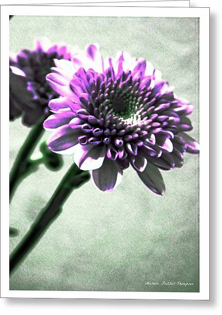 Purple Chrysanthemum Greeting Card by Michelle Frizzell-Thompson