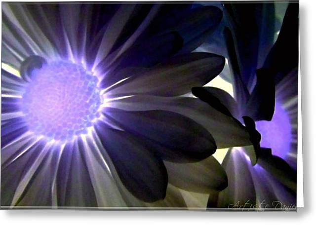 Purple Daisies Negative Effects Greeting Card by Danielle  Parent